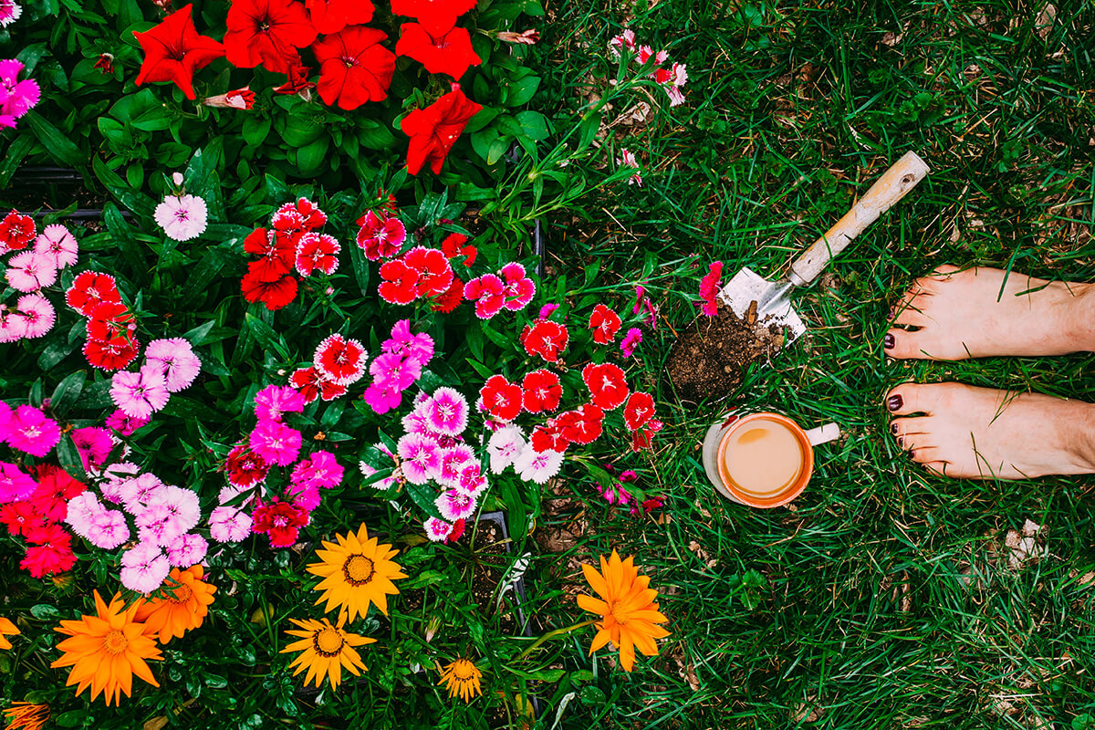 Overhead image of lady standing near flower garden with cup of coffee